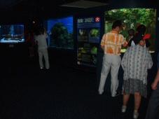 050703_aquarium_4