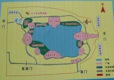 050720_lianhua_2