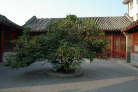 051022_tongzhou_073