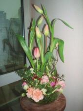 060111_flower11_001_2