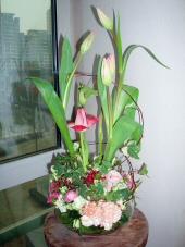 060111_flower11_002_2