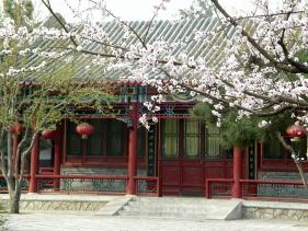 060331_zhongshan_0291