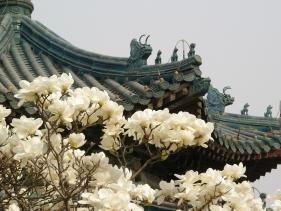 060331_zhongshan_041