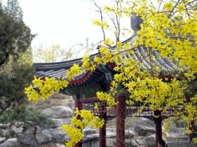060331_zhongshan_0441