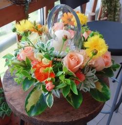 060615_flower20_003