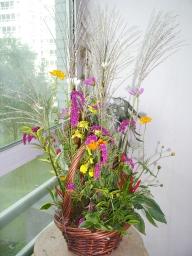060913_flower25_012