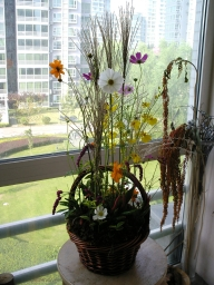 060913_flower25_0131