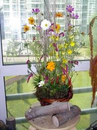 060913_flower25_0141