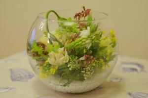 070411_flower34_0061