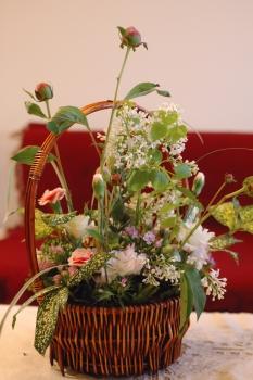 070419_flower35_0331