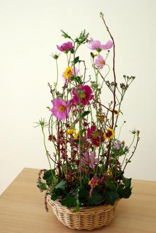 070920_flower42_0111